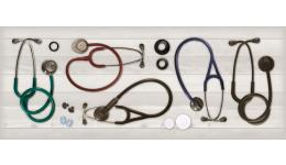 Other stethoscopes