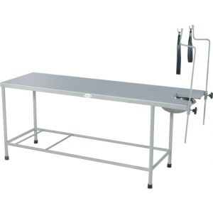 Premium Obstetric Labour Table (Plain)  Cw-41