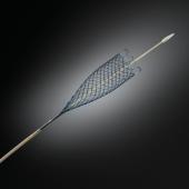 Wallflex Duodenal stent